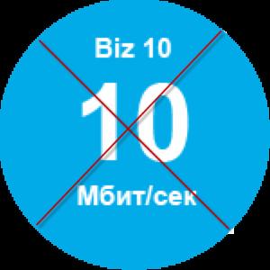 Biz10-500x500